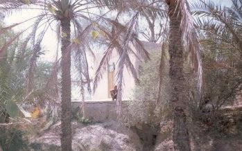 شیخ محمد اسماعیلی (شیخان)