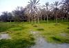 روستای دیرستان
