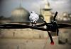 نشید تصویری «حی علی الجهاد»