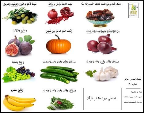 اسامی میوه ها در قرآن